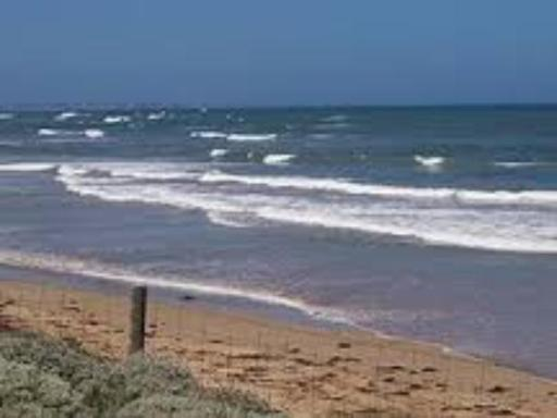 Best guest rating in Ocean Grove ➦  takes PayPal