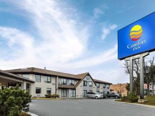 Comfort Inn Hotel Brampton