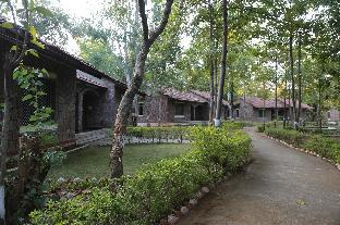 Promos Mogli Jungle Resort