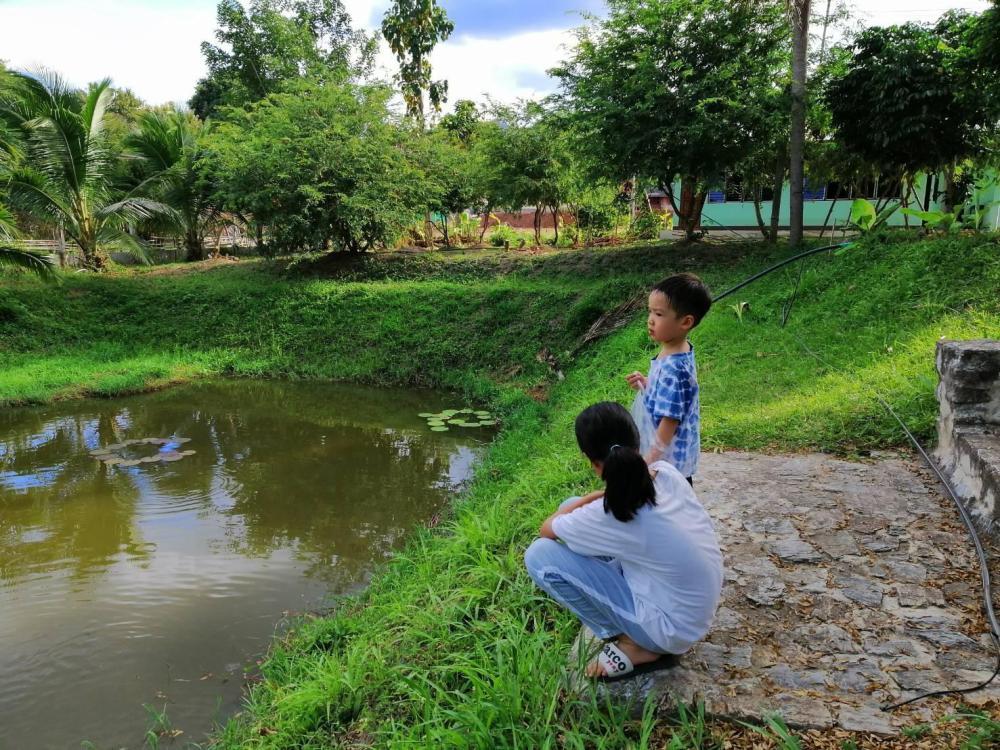 Baan Suan Lansang Farmstay Entire house in Tak