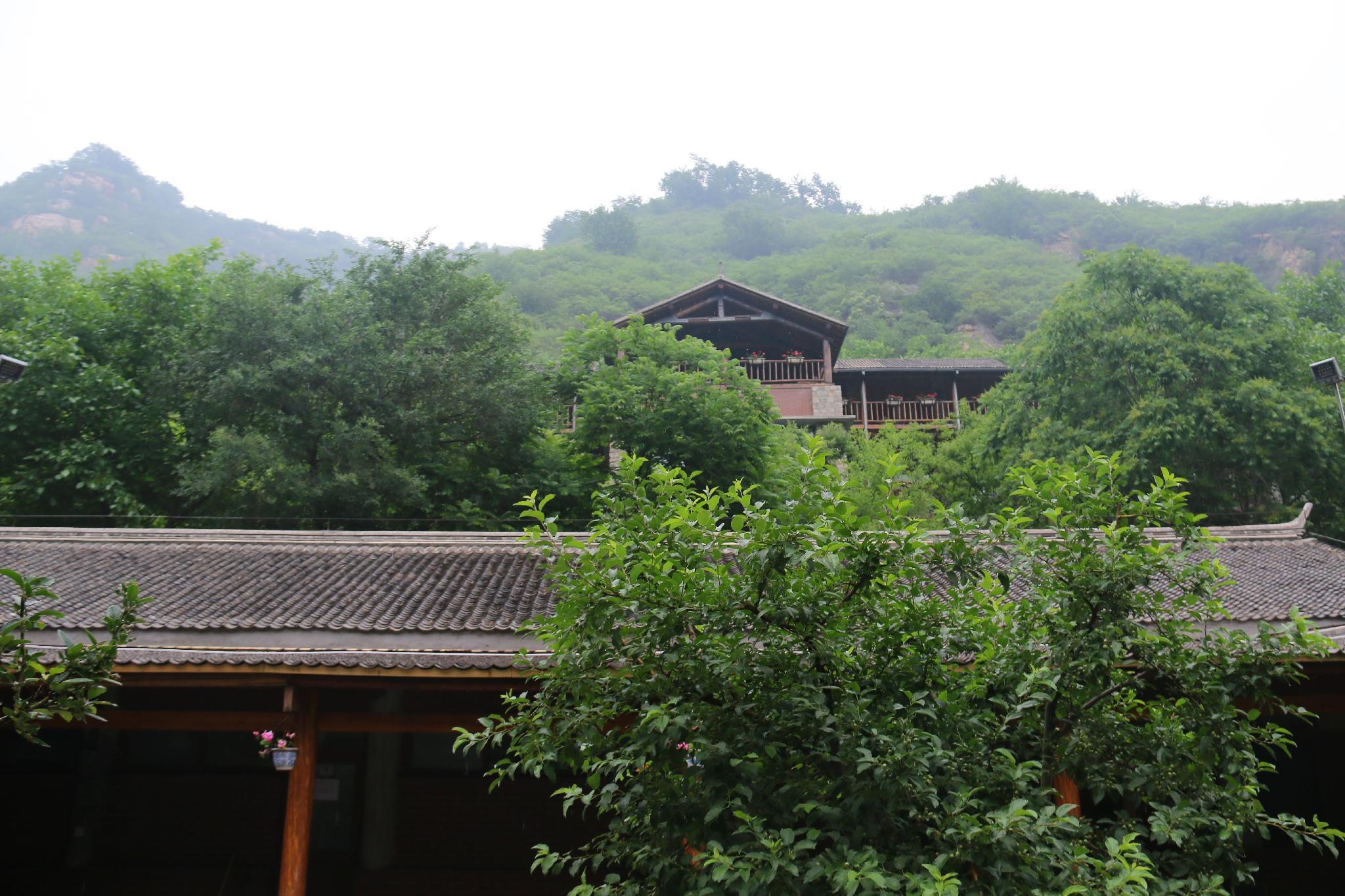 Singingdeer Lodge