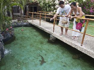 picture 3 of Bluewater Maribago Beach Resort