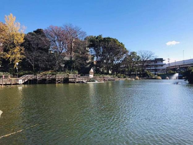 ShimuraSakaue 5min walk#LoftHouse#Max2 #201