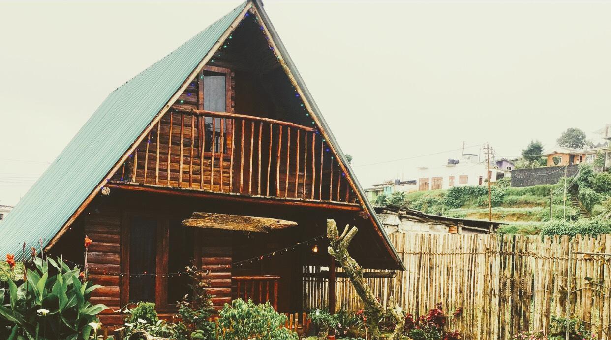 Redwood Hollow Cabana