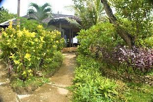 picture 4 of Toris Paradise