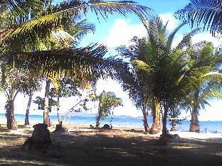 picture 5 of Bayog Beach Campsite