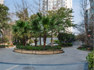 Chengdu Hefeng Little Villa