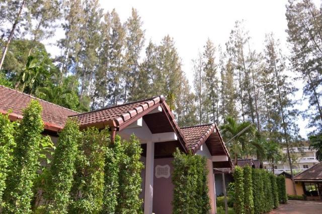 เดอะ ดีไลต์ พน์ ทรี วิลเลจ – The Delight Pine Tree Village