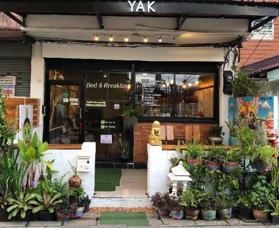Yak Guesthouse Chiang Mai