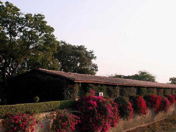 Shikarbadi Hotel Pvt. Ltd 2