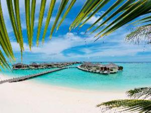 Tentang Paradise Island Resort & Spa (Paradise Island Resort & Spa)
