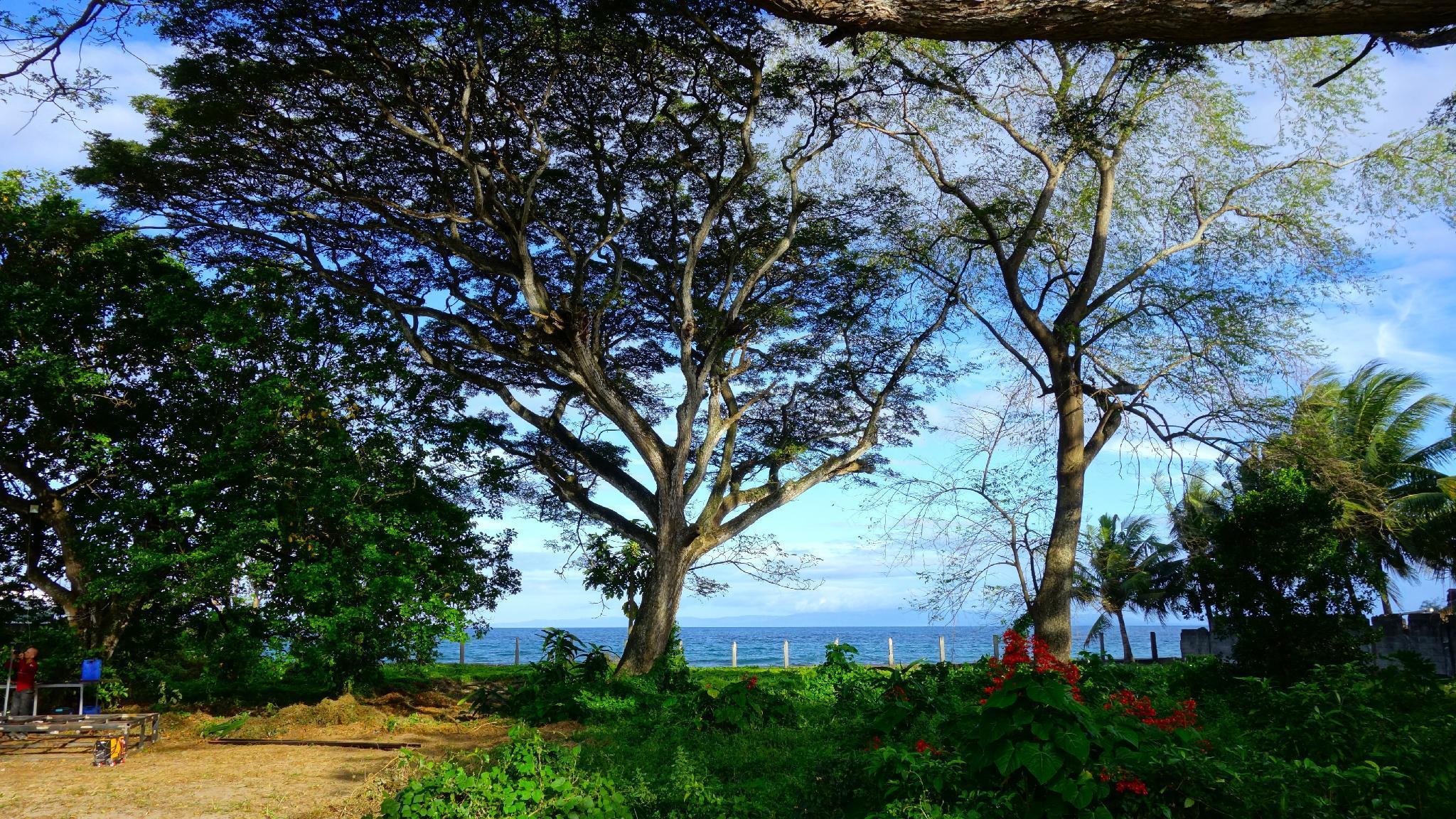 Pandora Beach Resort Property Accommodation Hotel