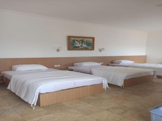 Guest House Simalem