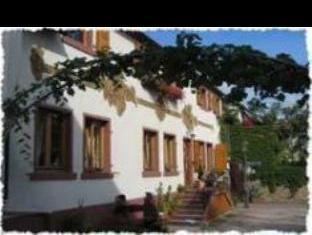 Hotel Rudesheimer Hof   Superior