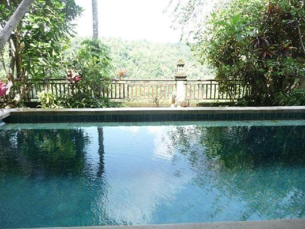 1BR with Plunge Pool & Jungle View @Ubud