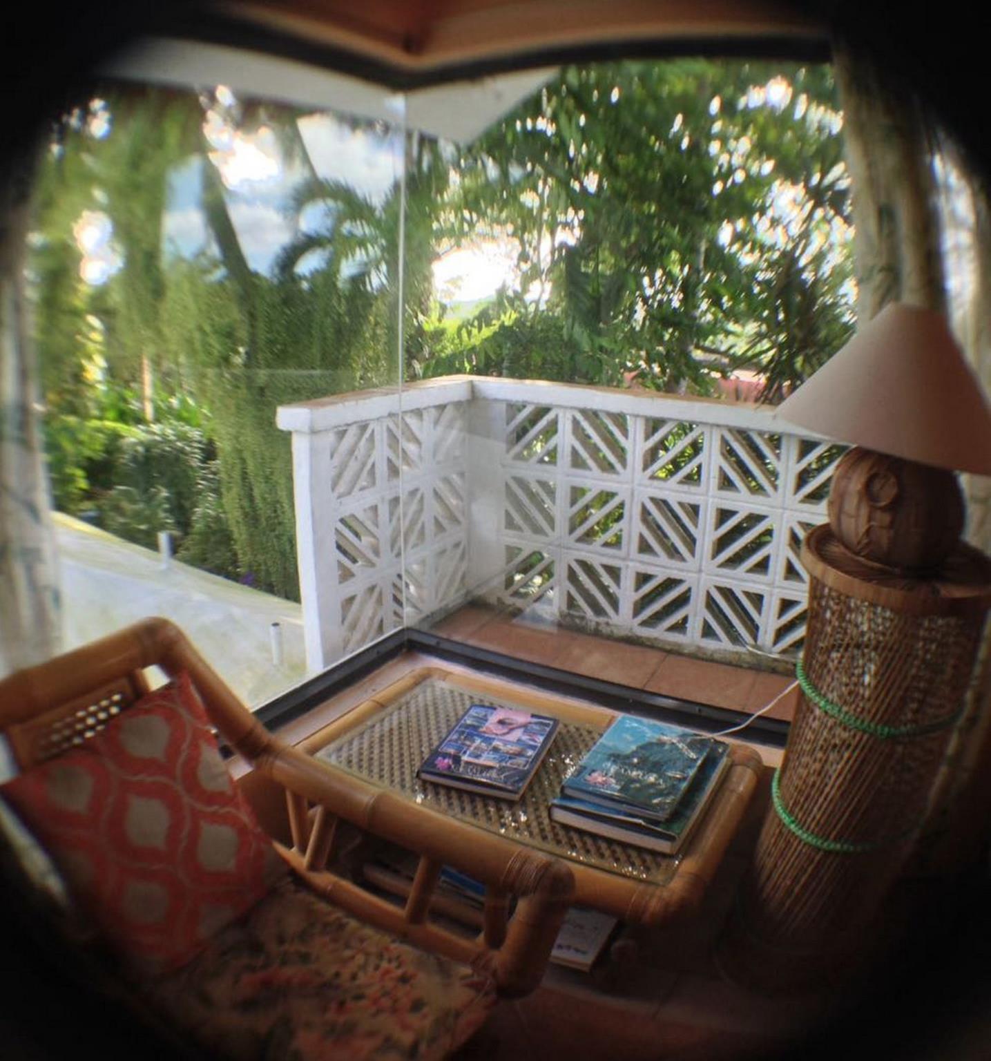 Jungle Bed & Breakfast