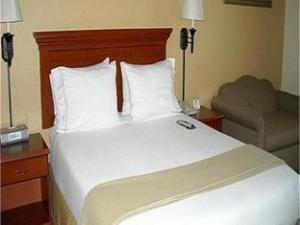 Tentang Holiday Inn Express Hotel & Suites Santa Clara (Holiday Inn Express Hotel & Suites Santa Clara)