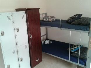Фото отеля Accomodation for Backpackers