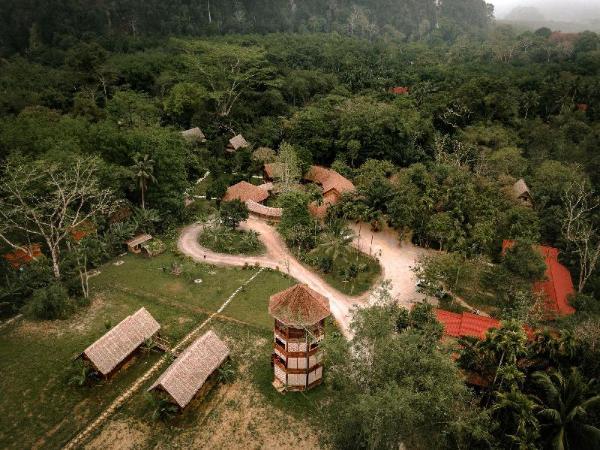 Our Jungle Camp - Eco Resort Khao Sok
