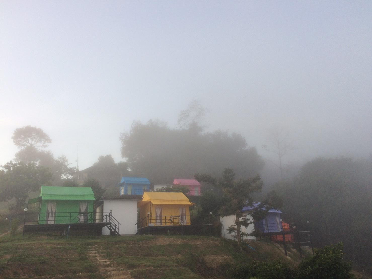 Cool Camping Resort