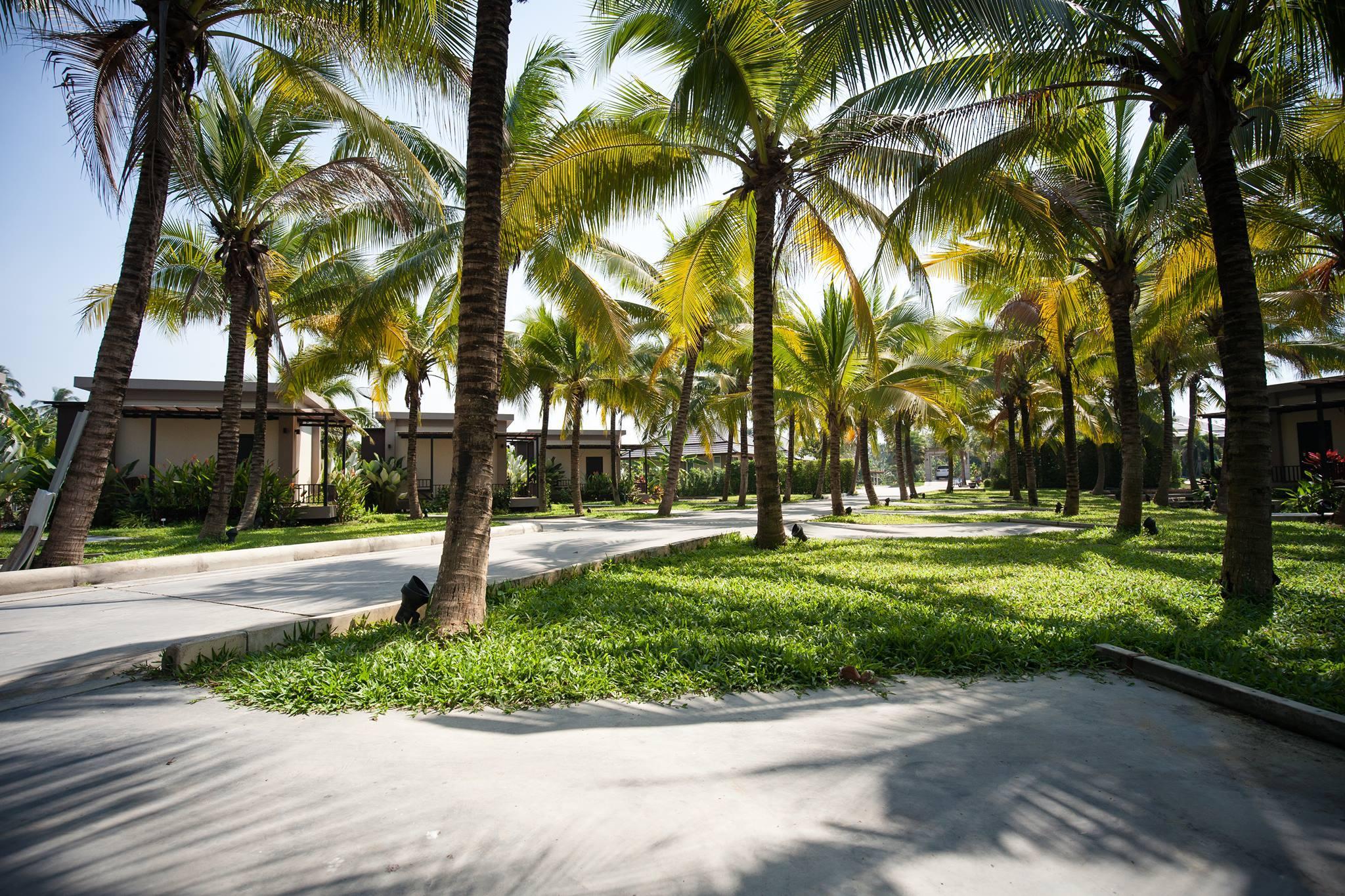 Dream Garden Resort