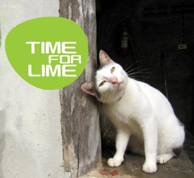 ไทม์ ฟอร์ ไลม์ – Time For Lime