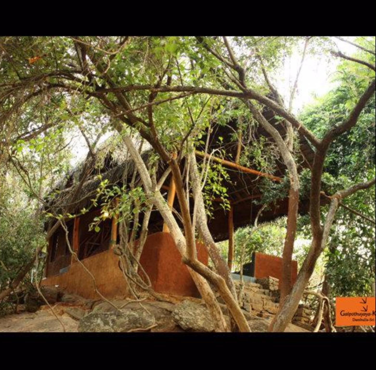 Galpothuyaaya Eco Lodge