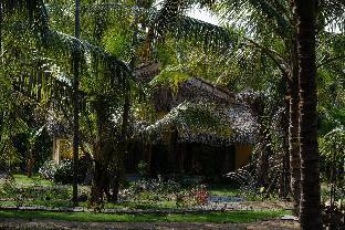 Mekong Home Bến Tre