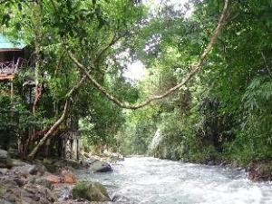 Tree Top River Huts