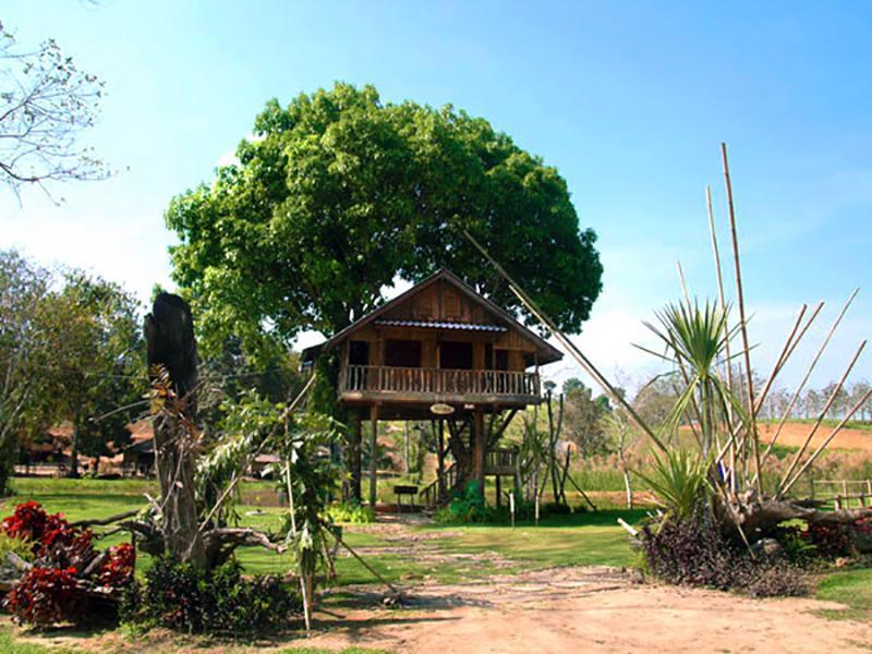 The Nature Club Resort