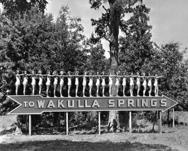 The Lodge At Wakulla Springs Hotel Crawfordville