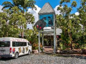 Om Daintree Wild Bed & Breakfast (Daintree Wild Bed & Breakfast)