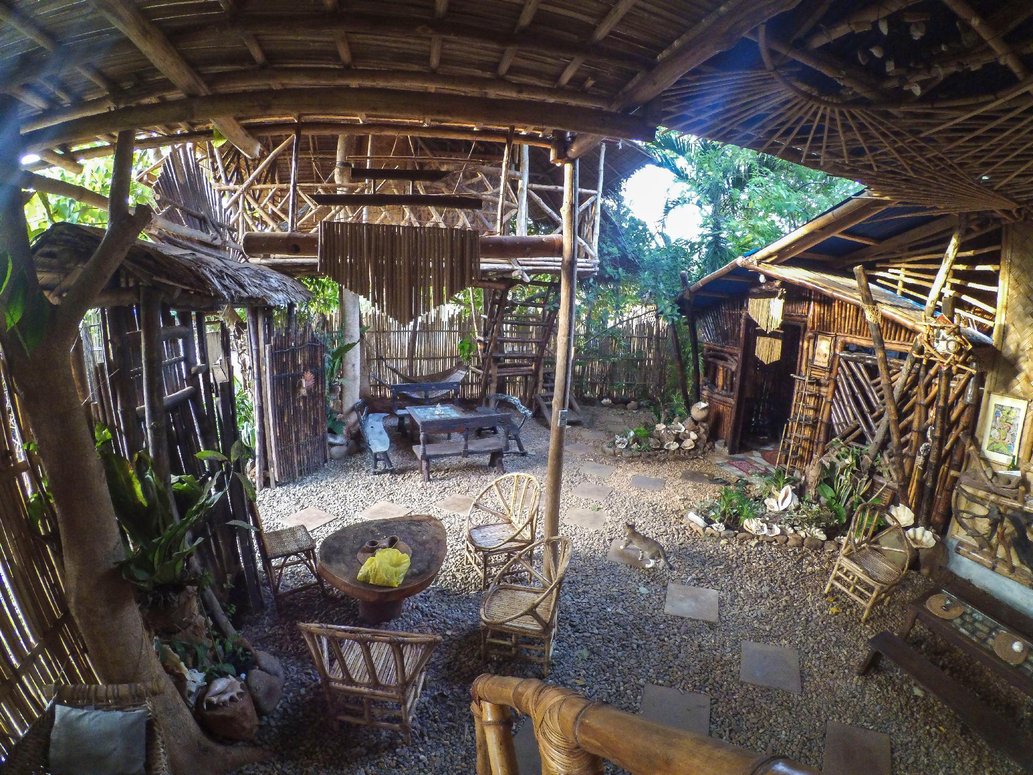 Amazing Gecko Bamboo Room