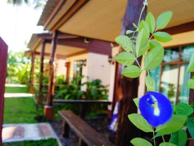 ซอนยา เกสท์เฮาส์ แอนด์ บังกะโล – Sonya Guesthouse and Bungalows