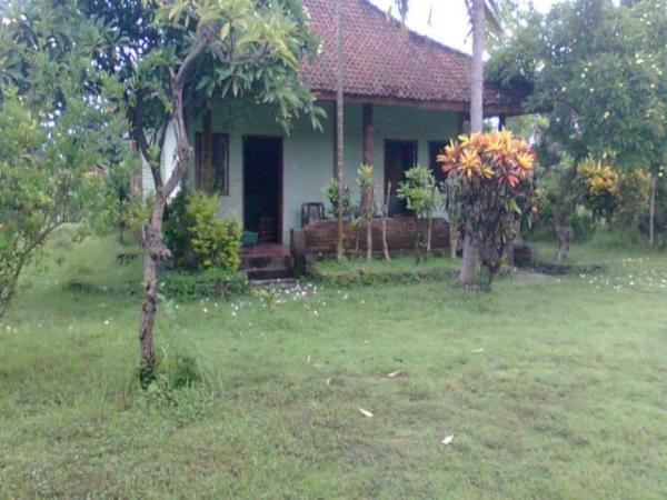 Hepi Bungalow Lovina Bali