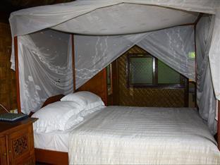 Shankari's Bali Retreat