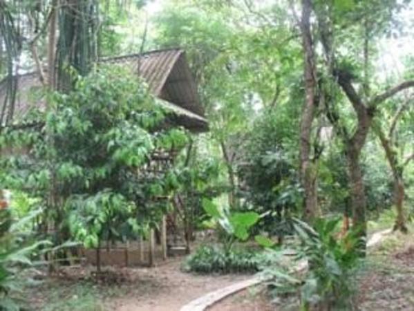 Khao Sok Valley Lodge Khao Sok