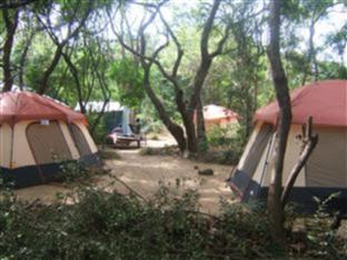 Alkin Resorts Camping