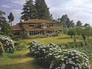 Abbott Mount Cottage - Lohaghat