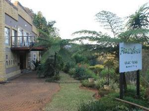 Forest View Guest House