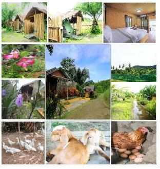 YaoIsland Resort and Farm YaoIsland Resort and Farm