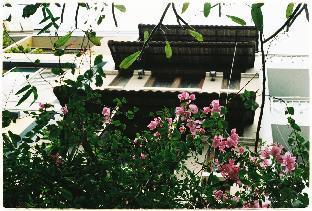 %name Colorful Saigon Central Spacious & Amazing Price Ho Chi Minh City
