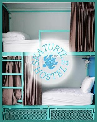 Sea Turtle Hostel ซี เทอร์เทิล โฮสเทล