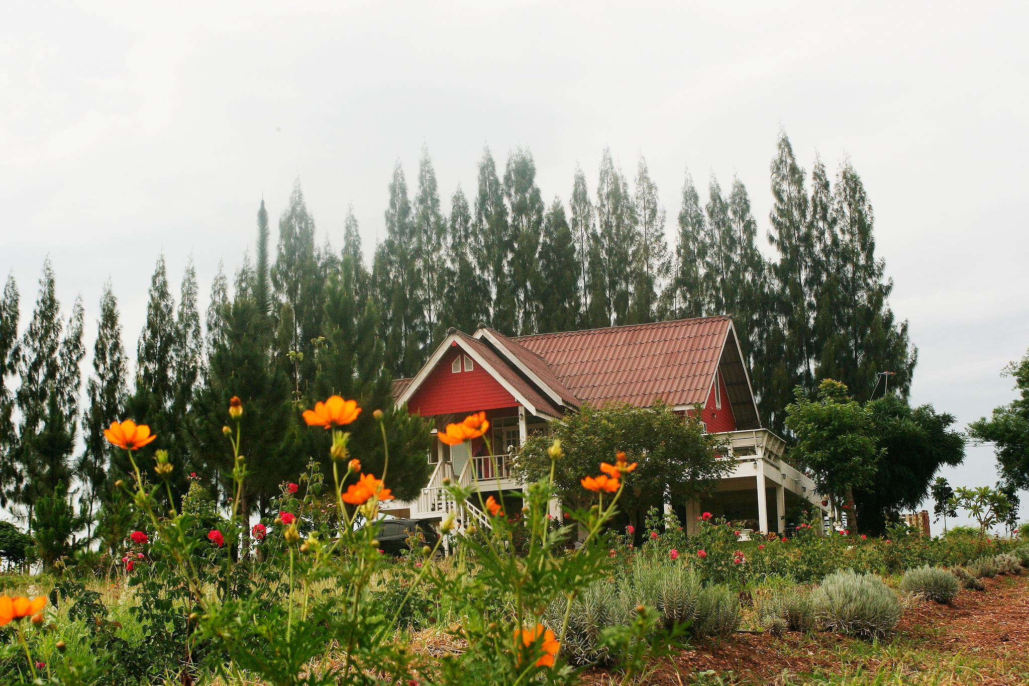 Lavender Hill Bed And Breakfast