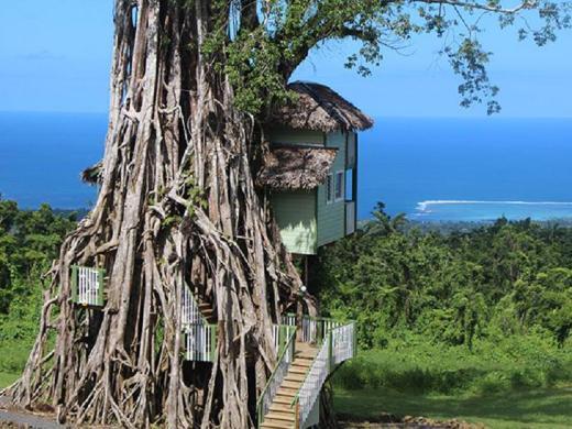 Lupe Sina Treesort Hotel