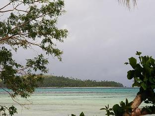 picture 3 of Tarzans Beach Resort