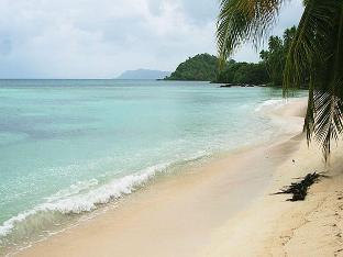 picture 4 of Tarzans Beach Resort