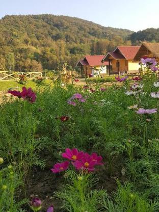 ペイサナエ ファイケン リゾート Peisanae Faikeng Resort