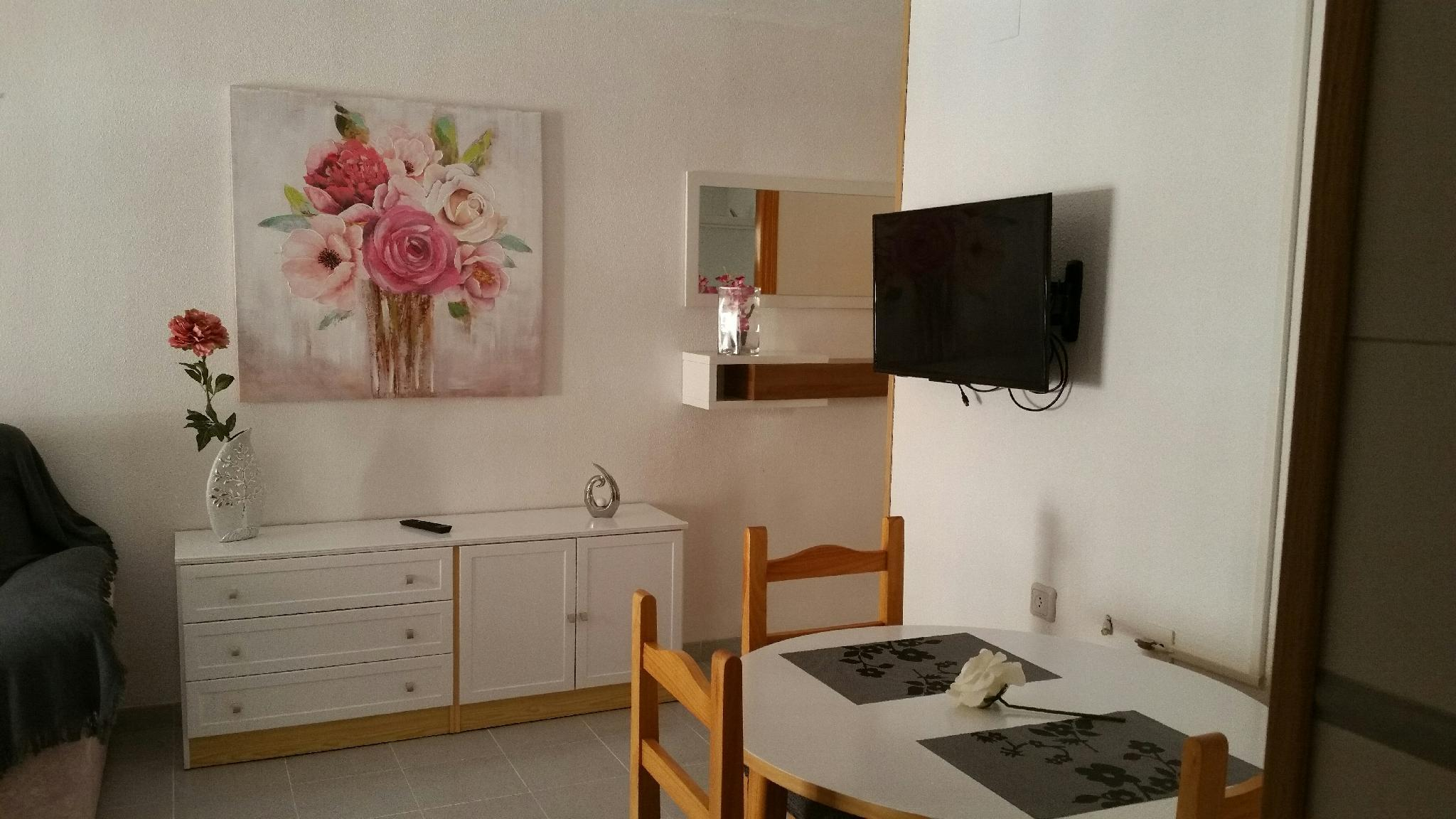 HOMELY APPARTMENT PLAYA ACEQUION