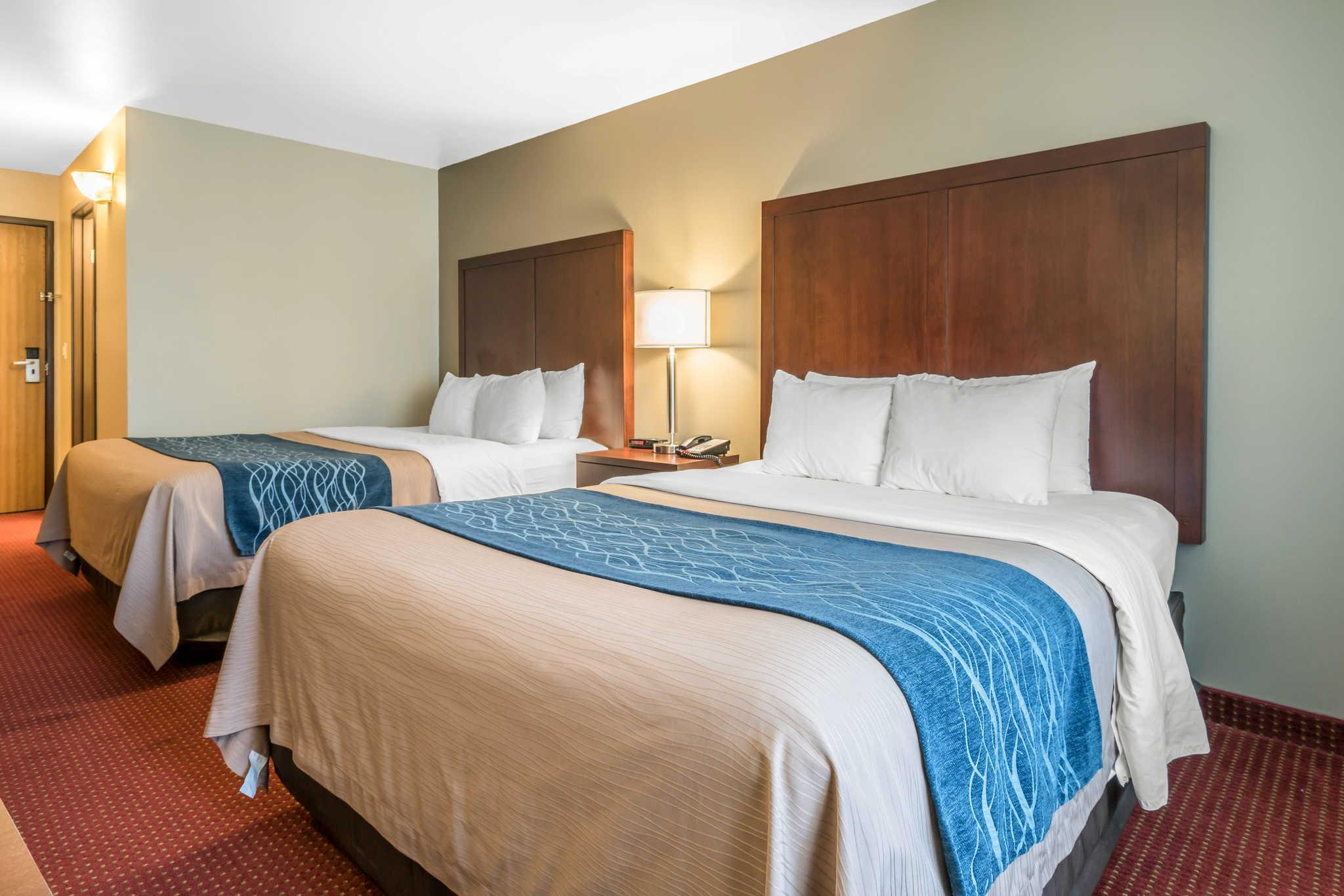Comfort Inn Lacey   Olympia